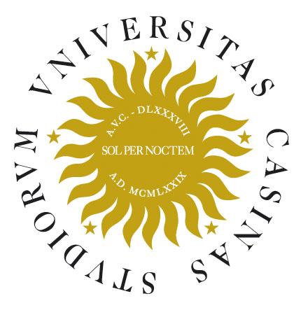 Università di Cassino e del Lazio meridionale